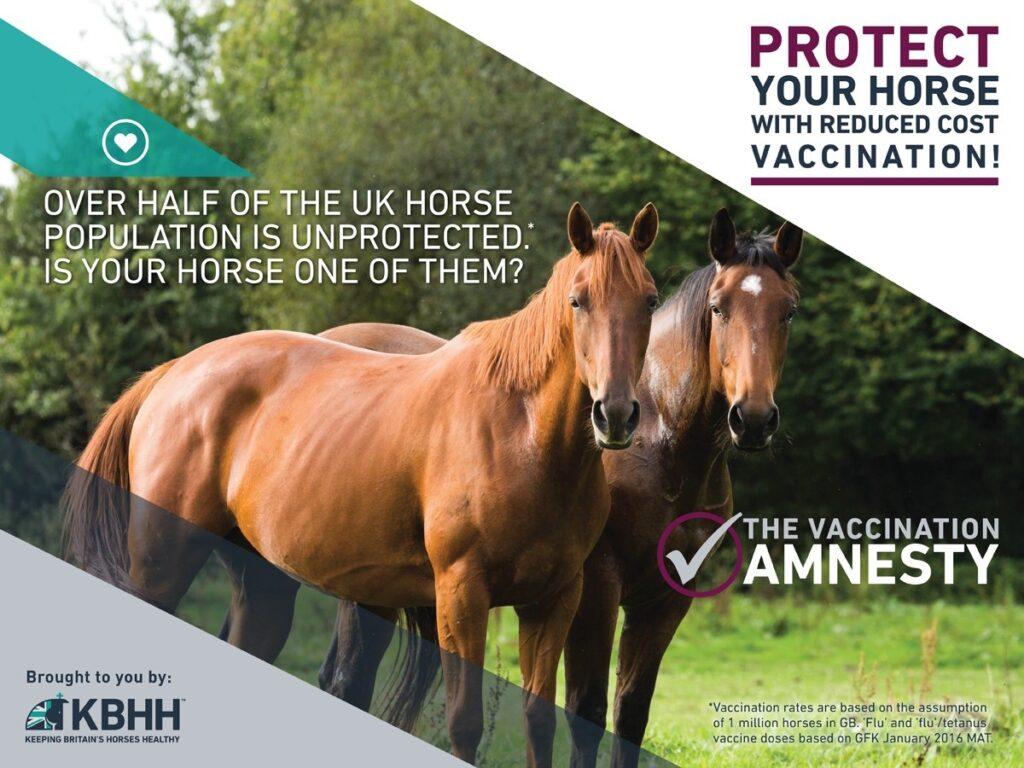 Equine Flu & Tetanus Vaccine Amnesty